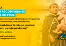 Antoninas de Amares canceladas e de regresso para o ano