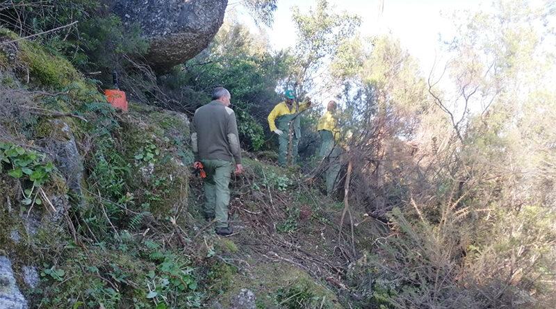 Via Romana/Geira em Terras de Bouro está a ser alvo de ação de limpeza